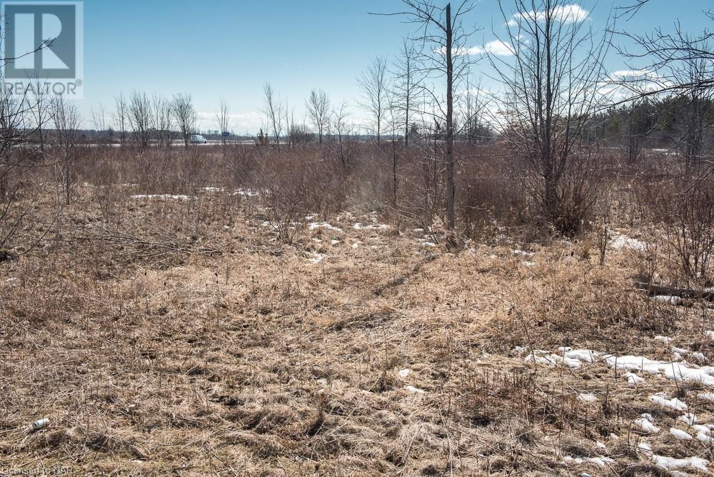 N/a Hwy 58 Highway, Welland, Ontario  L3K 5V5 - Photo 3 - 40094204