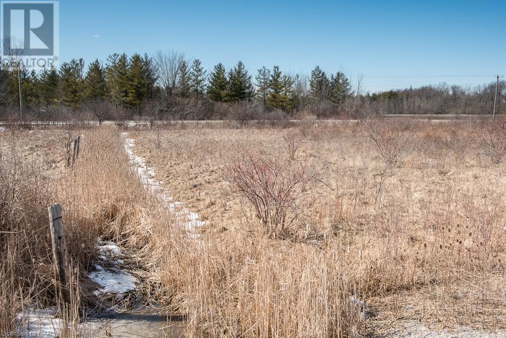 N/a Hwy 58 Highway, Welland, Ontario  L3K 5V5 - Photo 5 - 40094204
